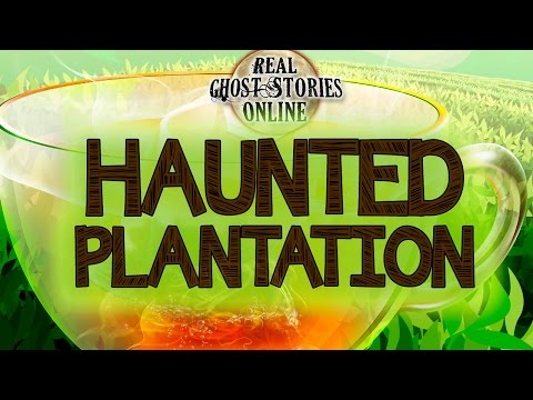 Haunted Plantation   Ghost Stories & Paranormal Podcast