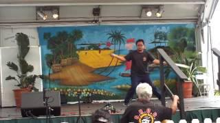 MSI martial arts demo at Lotus Festival 2017