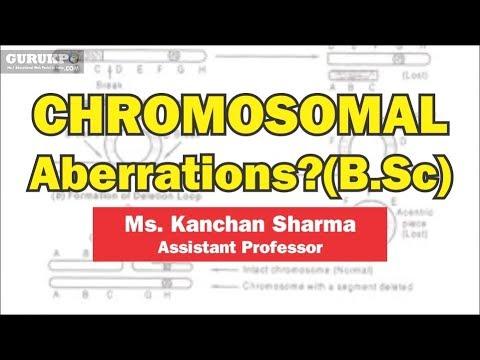 What is Chromosomal aberrations?(B.Sc)