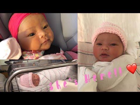 Welcome Kaydence Luna Pang! | Meet The Pangs
