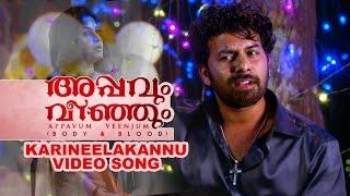 Appavum Veenjum | Karineelakannu |  New Malayalam Movie Video Song