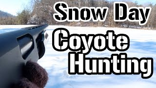 Snow Day Coyote Hunting!