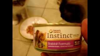 Nature's Variety Instinct Canned Cat Food Product Reviews - ねこ - ラグドール - Floppycats