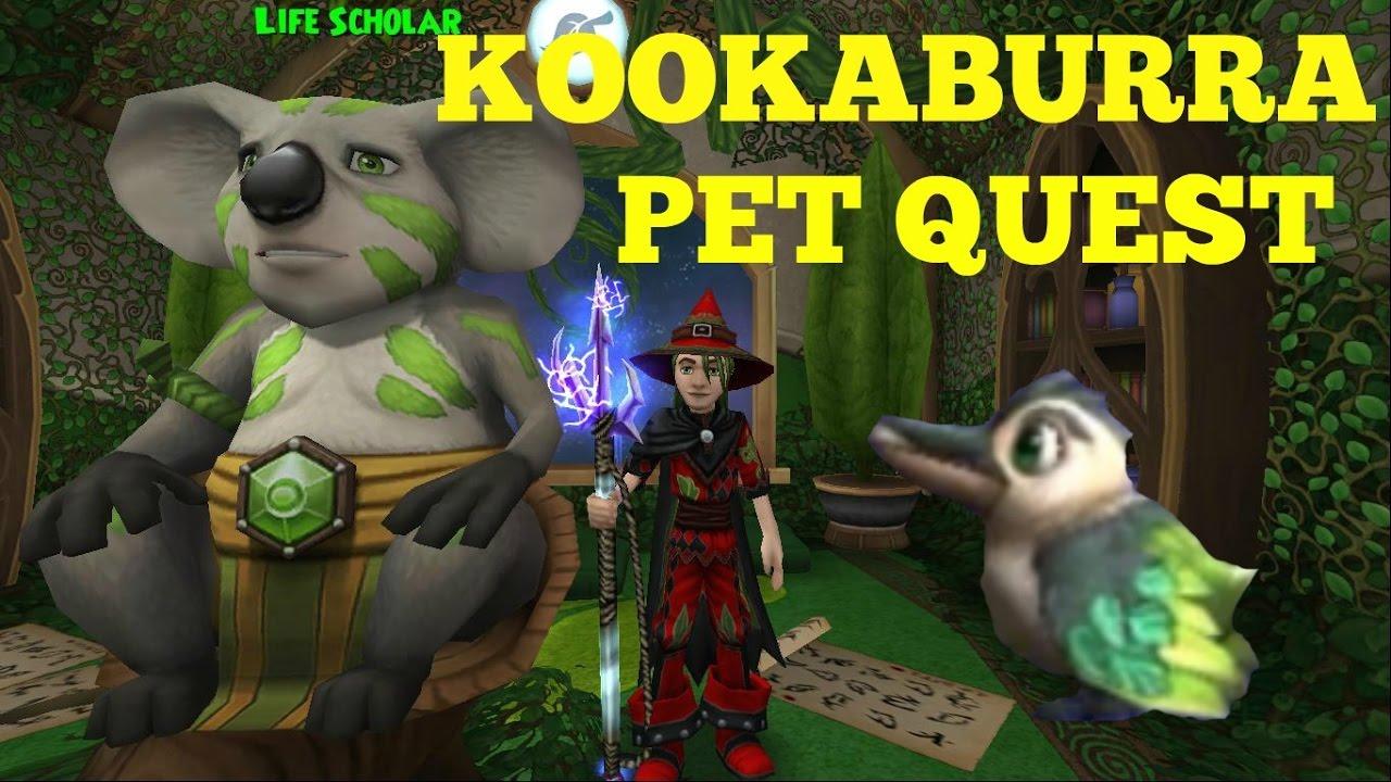 Wizard101: New Lvl 118 Life Kookaburra Pet Quest!