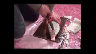 Как готовить строганину часть 1 made in Yakutia(Как есть сырую рыбу приёмы приготовления и приемы поедания под русскую водочку Наш канал: https://www.youtube.com/user/Oli..., 2013-12-19T07:32:27.000Z)