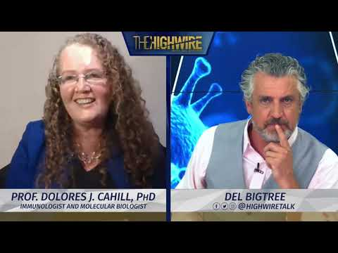 Prof. Dr. Dolores J. Cahill PHD on flu shots and vaccines - The Highwire with Del Bigtree