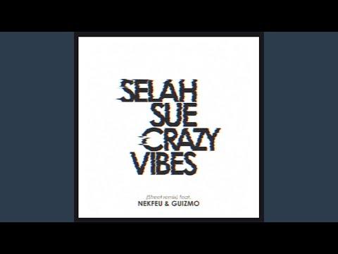 Crazy Vibes (Street Remix)