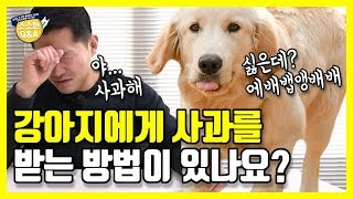 [Eng sub] Can I get an apology from my dog?|Kang Hyong Wook's Q&A
