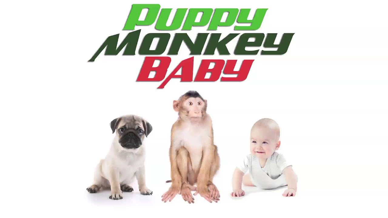 Mountain Dew Super Bowl ad for PuppyMonkeyBaby - Business
