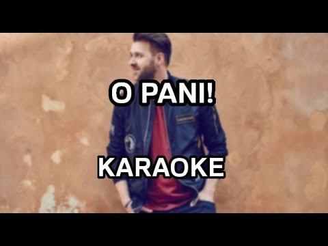 Grzegorz Hyży - O Pani! [karaoke/instrumental] - Polinstrumentalista