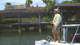 Crazy Fish Jumps Over the Dock