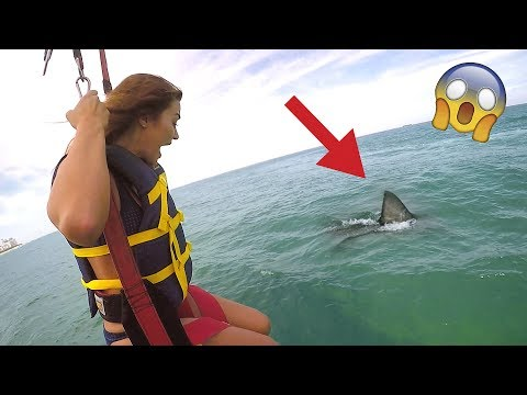 Thumbnail: SHARK ATTACK PRANK (WIFE FREAKOUT)