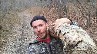 Крым Как я тренируюсь Элемент бревно Качки не смогут)