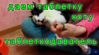 Как дать таблетку | Кот Еврик тестирует таблеткодаватель для животных: собак и кошек