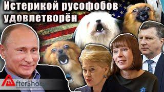 Истерикой русофобов удовлетворен | Aftershock.news