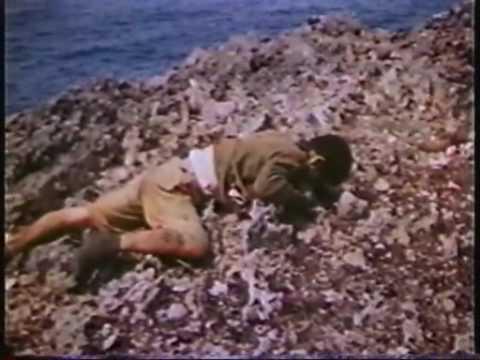 カラーフィルムで見る第二次世界大戦15-12.mp4