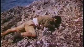 沖縄決戦カラー記録 資料映像