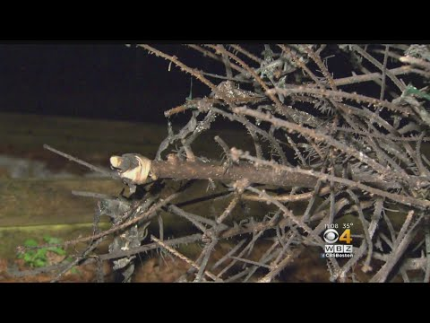Christmas Tree Topper Blamed For Fire In North Brookfield