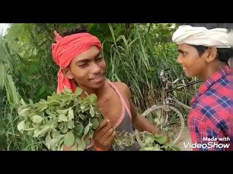 Download pudina ye  hasina Shakti Singh bhojpuriya dhamaal