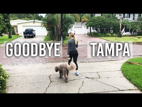 My Last Trip To Tampa