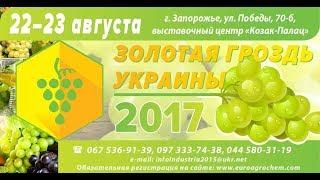 Золотая Гроздь Украины 2017