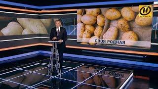 Контуры: Назначения Лукашенко | Изменения в Трудовом кодексе | День города / 15.09.2019
