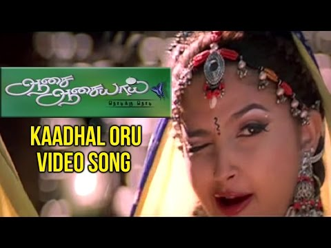 Aasai Aasaiyai Tamil Movie| Kaadhal Oru Video Song | Jiiva | Sharmelee | Mani Sharma