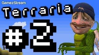 Terraria #2 - Fashion Accessories Thumbnail
