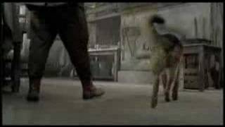Movie Trailer - Finding Rin Tin Tin (2007)