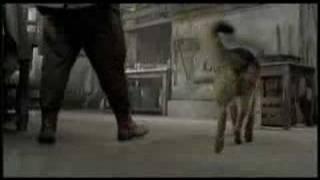 Movie Trailer - Finding Rin Tin Tin (2007)