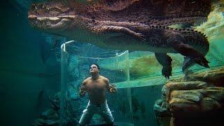 Die 10 krassesten Swimming Pools der Welt