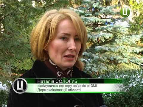 Поділля-центр: Ялинки у Хмельницькому почнуть продавати з наступного тижня