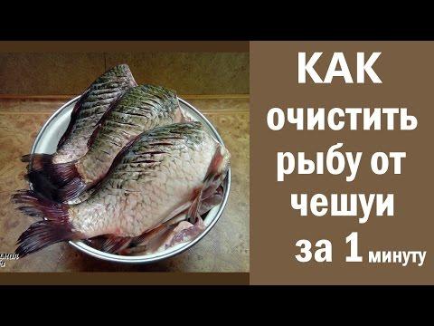 Как лучше чистить рыбу от чешуи