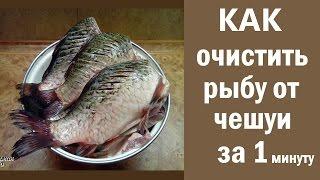 Як очистити рибу від луски за 1 хвилину. Швидко почистити рибу річкову