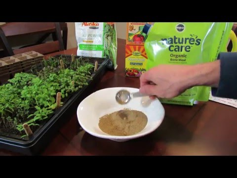 MFG 2016: Bone Meal an Organic Insoluble Garden Fertilizer: What is It & How do You Use It ?