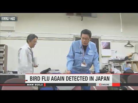 Environment Watch: Bird flu virus again detected in southwestern Japan 12/29/2014