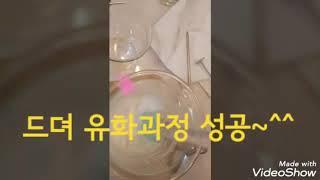 김해공방 김해천연공방 블레스영천연공방 - 천연썬크림만들…