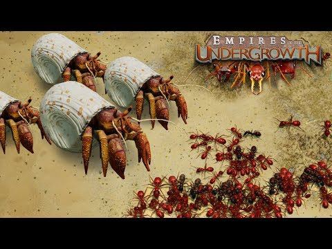 BATTLE ON THE BEACHES! - Empires of the Undergrowth BETA Gameplay | Ep4