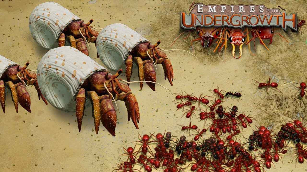BATTLE ON THE BEACHES! – Empires of the Undergrowth BETA Gameplay | Ep4