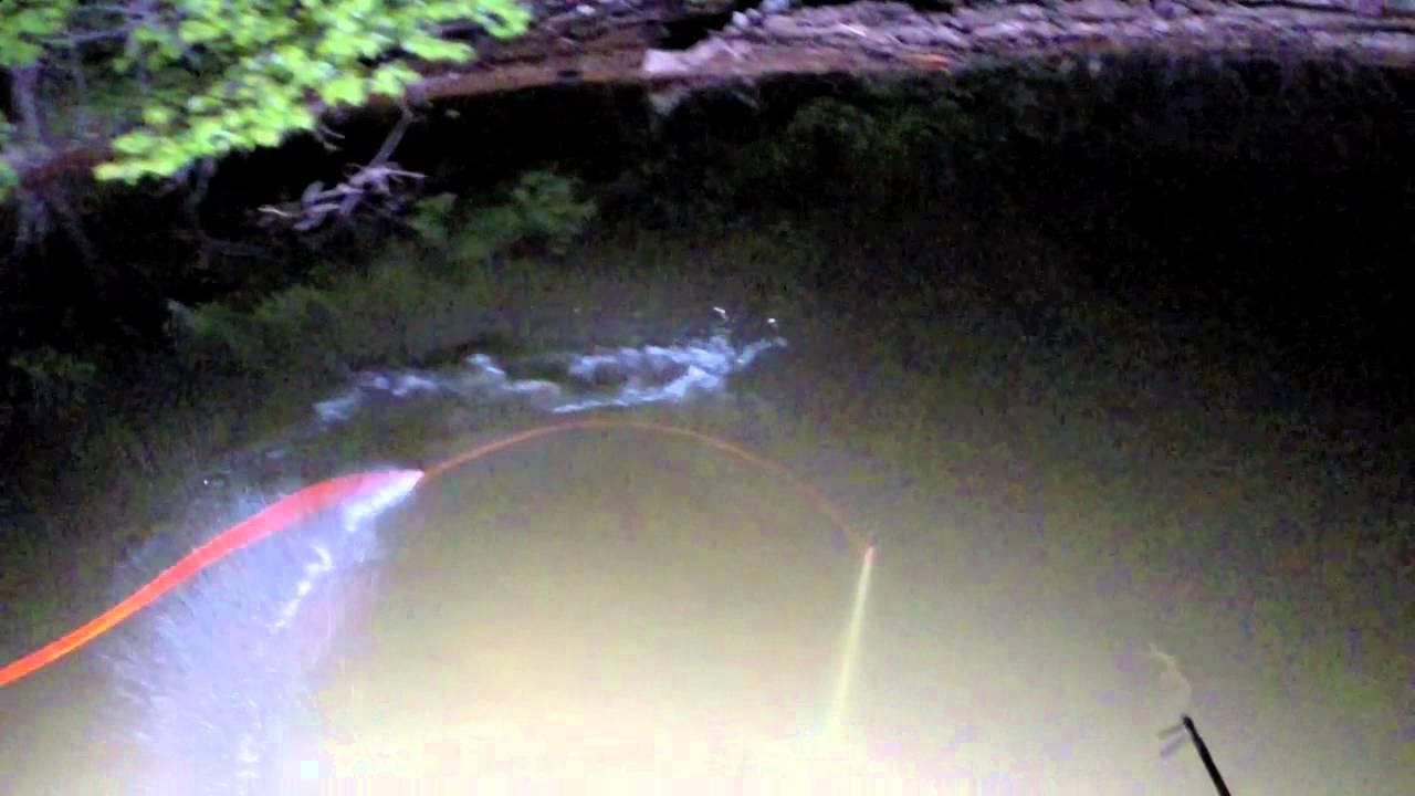 Bowfishing With Led Lights Youtube