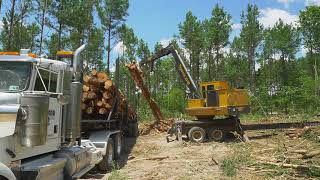 Logging 125 FOOT POLES on SWITCHBACK CORNERS!!! Clear and Level