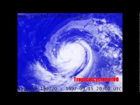 Typhoon David (1997)