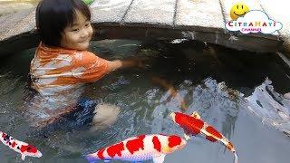 Mainan Anak Menangkap Ikan Hias - Air Di Obok Obok - Berenang Di Kolam Renang Anak