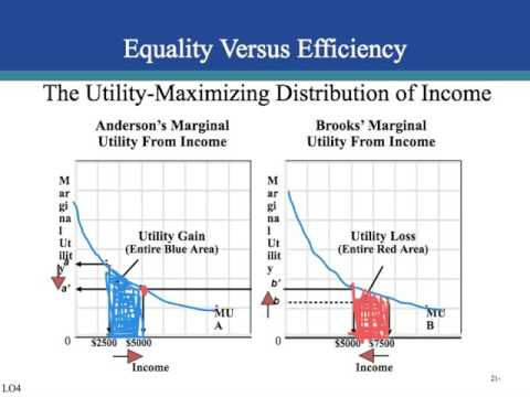ch. 21 income inequality, poverty and discrimination