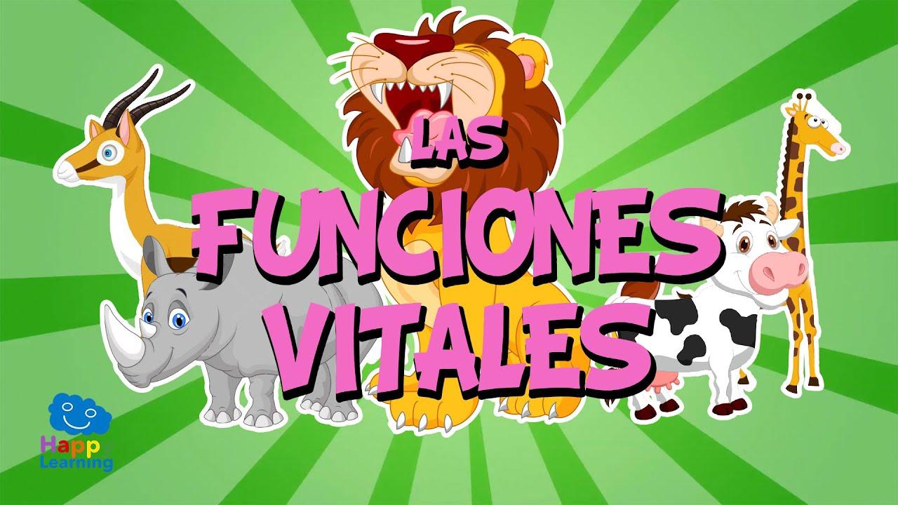 Las Funciones Vitales Videos Educativos Para Niños Youtube