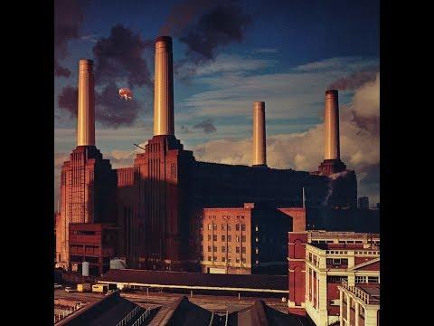 Pink Floyd - Animals (US - LP - RE - PINK FLOYD RECORDS - 2016 - PFRLP10)
