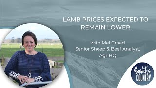"""Lamb prices expected to remain lower"" with Mel Croad"