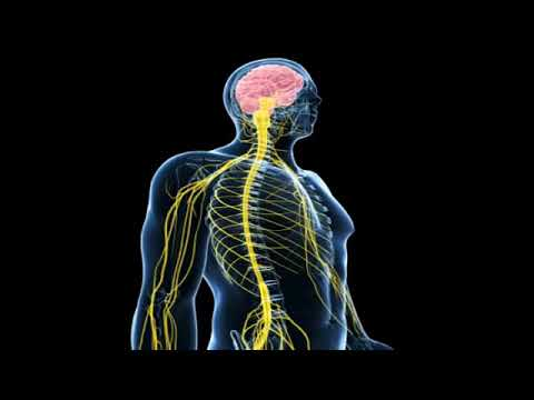 Craniosacral (aka Cranial Sacral) Therapy in Scottsdale at The Get Well Center