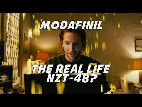 modafinil overview