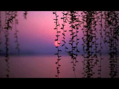 Wallander - Anna Ternheim - Quiet Night